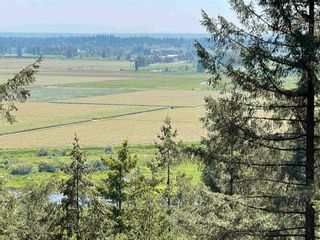 Photo 3: 20075 MENZIES Road in Pitt Meadows: North Meadows PI Land for sale : MLS®# R2608260