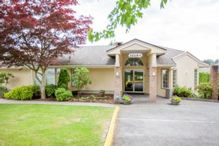 """Photo 19: 228 22555 116 Avenue in Maple Ridge: East Central Townhouse for sale in """"Hillside at Fraser Village"""" : MLS®# R2557464"""