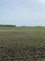 Main Photo: 57206 Hwy 44: Rural Sturgeon County Rural Land/Vacant Lot for sale : MLS®# E4226797