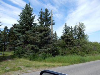 Photo 4: 112152 266 Avenue W: Rural Foothills County Residential Land for sale : MLS®# A1065931