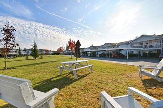"Photo 19: 114 32691 GARIBALDI Drive in Abbotsford: Central Abbotsford Condo for sale in ""Carriage Lane"" : MLS®# R2505717"