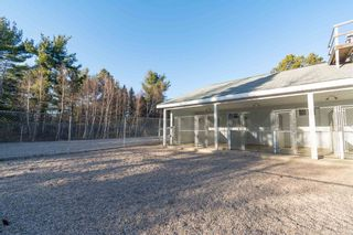 Photo 26: 10301 Highway 201 in Meadowvale: 400-Annapolis County Commercial  (Annapolis Valley)  : MLS®# 202106043