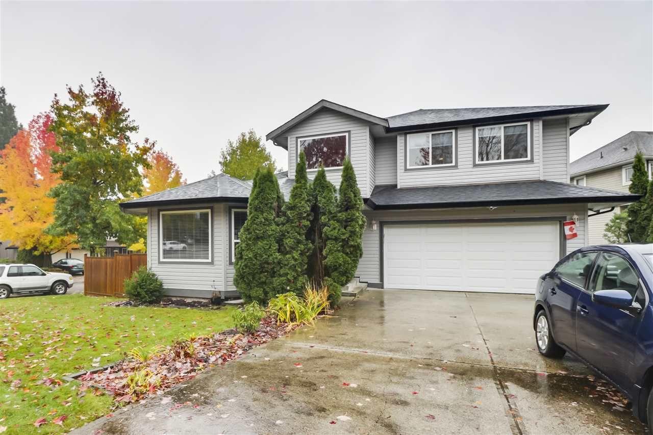 Photo 23: Photos: 23796 110B Avenue in Maple Ridge: Cottonwood MR House for sale : MLS®# R2516377