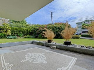 Photo 17: 103 420 Linden Ave in : Vi Fairfield West Condo for sale (Victoria)  : MLS®# 787337
