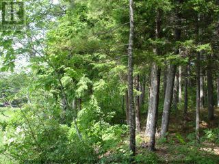 Photo 9: Lot 11 RAFUSE POINT Road in Pleasantville: Vacant Land for sale : MLS®# 202122075