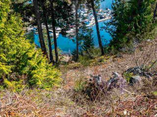 "Photo 11: LOT 16 4622 SINCLAIR BAY Road in Garden Bay: Pender Harbour Egmont Land for sale in ""FARRINGTON COVE"" (Sunshine Coast)  : MLS®# R2561781"