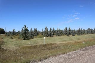 Photo 13: Hwy 622 RR 15: Rural Leduc County Rural Land/Vacant Lot for sale : MLS®# E4261453