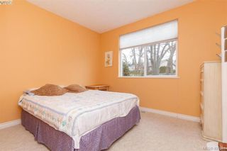 Photo 14: 14 3281 Maplewood Rd in VICTORIA: SE Cedar Hill Row/Townhouse for sale (Saanich East)  : MLS®# 806728