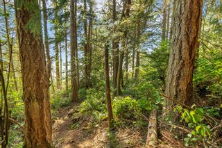 Photo 3: 2550 Seaside Dr in : Sk French Beach Land for sale (Sooke)  : MLS®# 873874
