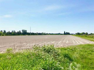 Photo 3: 13091 NO 3 Road in Richmond: Gilmore Land Commercial for sale : MLS®# C8020768