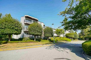"""Photo 1: 302 9952 149 Street in Surrey: Guildford Condo for sale in """"TALL TIMBERS"""" (North Surrey)  : MLS®# R2492246"""