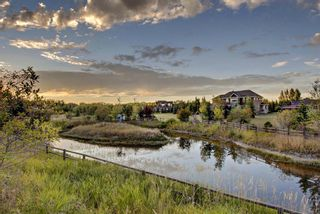 Photo 50: 56 Norris Coulee Trail: Rural Foothills County Detached for sale : MLS®# A1035968
