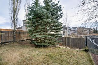 Photo 43: 258 Royal Birkdale Crescent NW in Calgary: Royal Oak Detached for sale : MLS®# A1053937