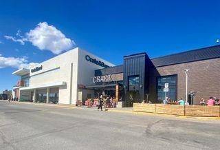 Photo 45: 10808 Maplecreek Drive SE in Calgary: Maple Ridge Detached for sale : MLS®# A1102150