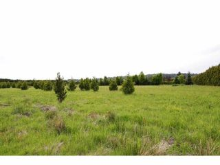 """Photo 9: 7200 216TH Street in Langley: Willoughby Heights Land for sale in """"Milner"""" : MLS®# F1411651"""