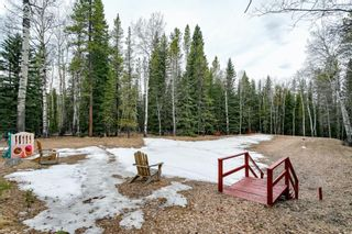 Photo 6: 231167 Forestry Way: Bragg Creek Detached for sale : MLS®# A1111697