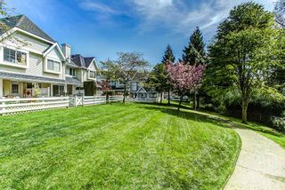 "Photo 20: 23 23560 119 Avenue in Maple Ridge: Cottonwood MR Townhouse for sale in ""HOLLYHOCK"" : MLS®# R2162946"