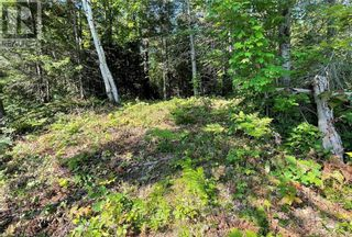 Photo 10: 17 PAULS BAY Road in McDougall: Vacant Land for sale : MLS®# 40146136