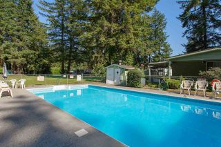 """Photo 21: 34 20071 24 Avenue in Langley: Brookswood Langley Manufactured Home for sale in """"Fernridge Park"""" : MLS®# R2484697"""
