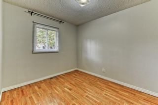 Photo 19: 8815 36 Avenue NW in Calgary: Bowness Detached for sale : MLS®# A1151045