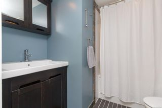 Photo 47: 1314 Balmoral Rd in : Vi Fernwood House for sale (Victoria)  : MLS®# 857803