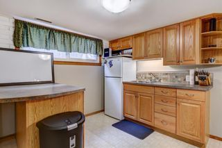 Photo 21: 724 35A Street NW in Calgary: Parkdale Detached for sale : MLS®# A1100563