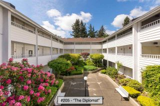 """Photo 1: 205 707 EIGHTH Street in New Westminster: Uptown NW Condo for sale in """"The Diplomat"""" : MLS®# R2273026"""