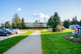 """Photo 37: 204 1048 KING ALBERT Avenue in Coquitlam: Central Coquitlam Condo for sale in """"BLUE MOUNTAIN MANOR"""" : MLS®# R2560966"""