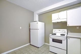Photo 33: 379 Coventry Road NE in Calgary: Coventry Hills Detached for sale : MLS®# A1139977