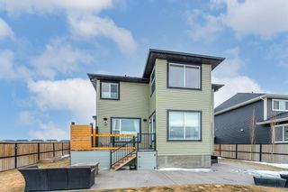 Photo 37: 197 Rainbow Falls Heath: Chestermere Detached for sale : MLS®# A1062288