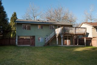Photo 23:  in Surrey: Home for sale : MLS®# F1403509