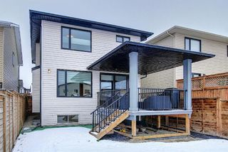 Photo 25: 16 Walden Mount SE in Calgary: Walden Residential for sale : MLS®# A1053734