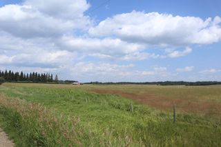 Photo 12: Twp 510 RR 33: Rural Leduc County Rural Land/Vacant Lot for sale : MLS®# E4256128