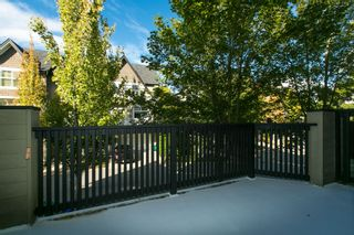 Photo 8: 62 6888 Robson Drive in Stanford Place: Terra Nova Home for sale ()  : MLS®# V1029186
