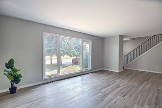 Photo 16: 7516 131A Avenue in Edmonton: Zone 02 House for sale : MLS®# E4254538