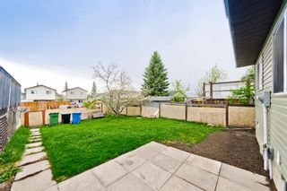 Photo 29: 50 Martindale Mews NE in Calgary: Martindale Detached for sale : MLS®# A1114466