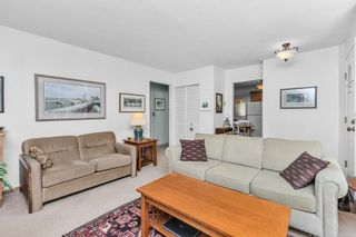 Photo 9: 24003 FERN Crescent in Maple Ridge: Silver Valley House for sale : MLS®# R2580820