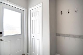 Photo 18: 304 Chinook Gate Close SW: Airdrie Detached for sale : MLS®# A1098545