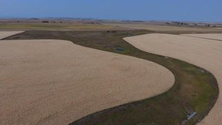 Photo 13: : Rural Foothills M.D. Land for sale : MLS®# C4137604