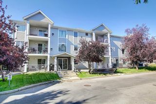 Photo 42: 105 5105 Valleyview Park SE in Calgary: Dover Apartment for sale : MLS®# A1138950