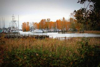 """Photo 20: 108 4955 RIVER Road in Delta: Neilsen Grove Condo for sale in """"SHORE WALK"""" (Ladner)  : MLS®# R2118758"""