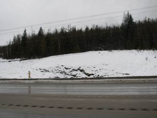 Photo 2: Lot 1 Trans Can Hwy: Blind Bay Land Only for sale (Shuswap)  : MLS®# 10148323