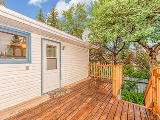 Photo 25: 3240 56 Street NE in Calgary: Pineridge Detached for sale : MLS®# C4256350