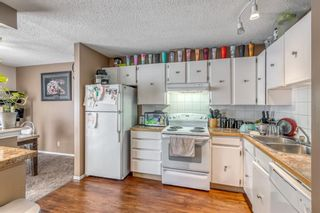 Photo 7: 5258 19 Avenue NW in Calgary: Montgomery Semi Detached for sale : MLS®# A1131802