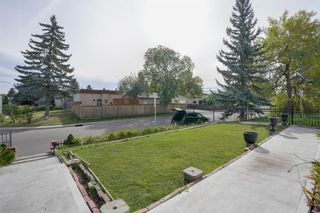 Photo 11: 3307 39 Street SE in Calgary: Dover Detached for sale : MLS®# A1148179