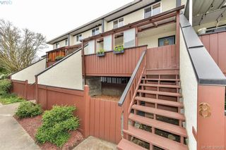 Photo 15: 8 954 Queens Ave in VICTORIA: Vi Central Park Row/Townhouse for sale (Victoria)  : MLS®# 780769