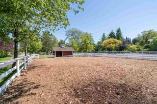 Photo 15: 7225 BLENHEIM Street in Vancouver: Southlands House for sale (Vancouver West)  : MLS®# R2482803