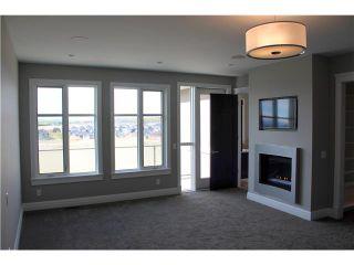 Photo 14: 223 ASPEN RIDGE Place SW in CALGARY: Aspen Woods Residential Detached Single Family for sale (Calgary)  : MLS®# C3595060