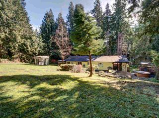 Photo 10: 3004 LOWER Road: Roberts Creek House for sale (Sunshine Coast)  : MLS®# R2249400