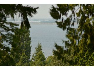 Photo 17: 12353 CEDAR Drive in Surrey: Crescent Bch Ocean Pk. House for sale (South Surrey White Rock)  : MLS®# F1446162